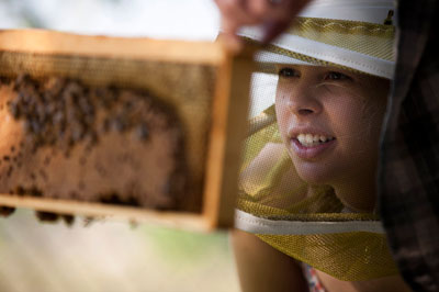 The Bee Corp. CEO Ellie Symes looks at a hive through protective headgear