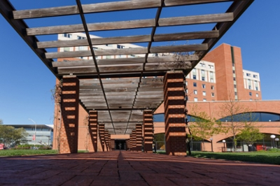 View of Hine Hall at IUPUI while walking through the pergola over the sidewalk